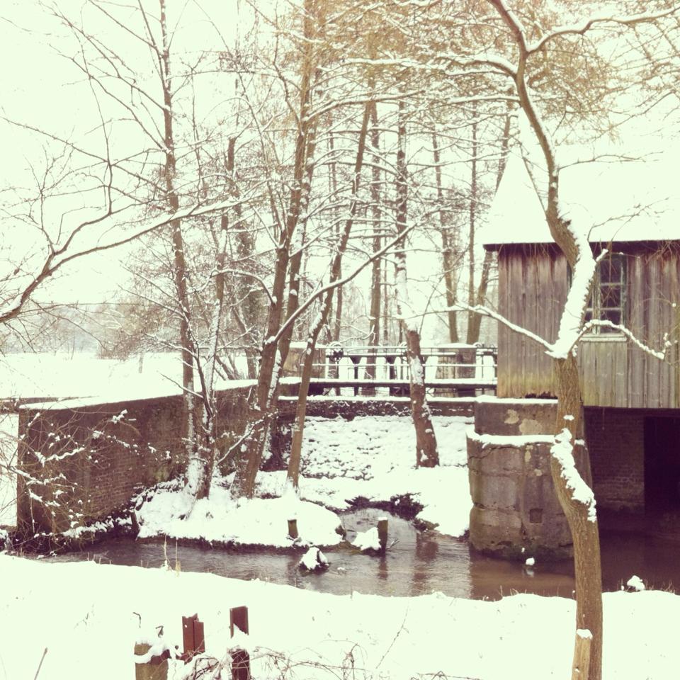 balade sous la neige 6