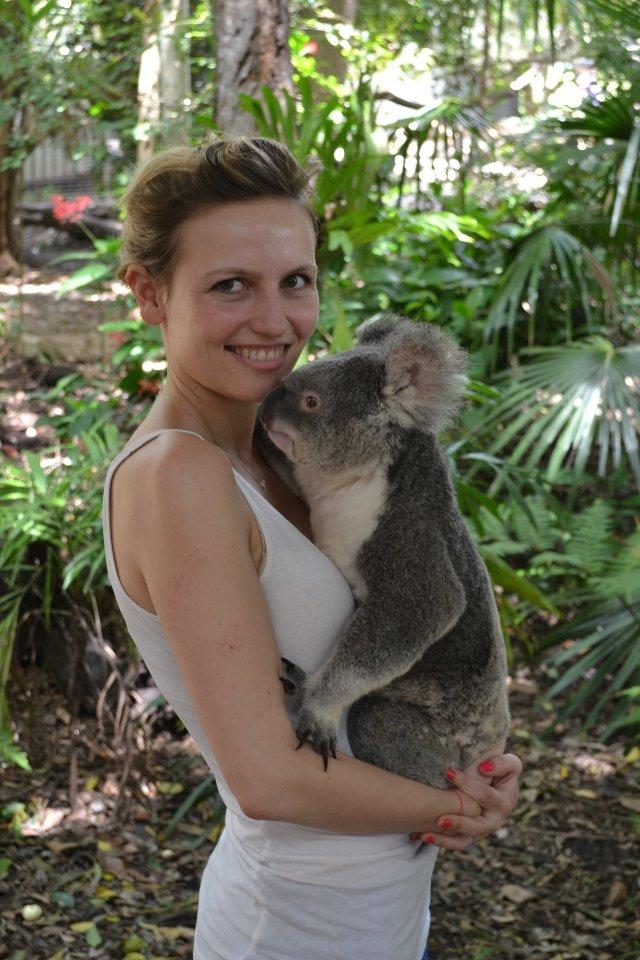 voyage de noce australie rencontre calin koala
