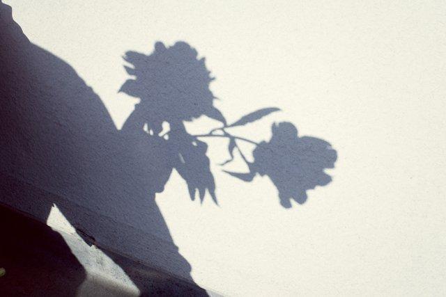 seance-engagement-toits-paris-a-vos-amours (14)