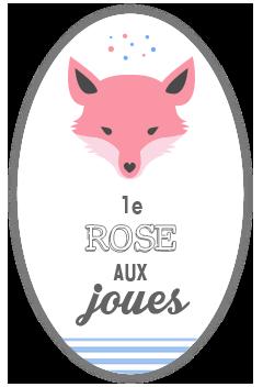le-rose-aux-joues-blog-beaute
