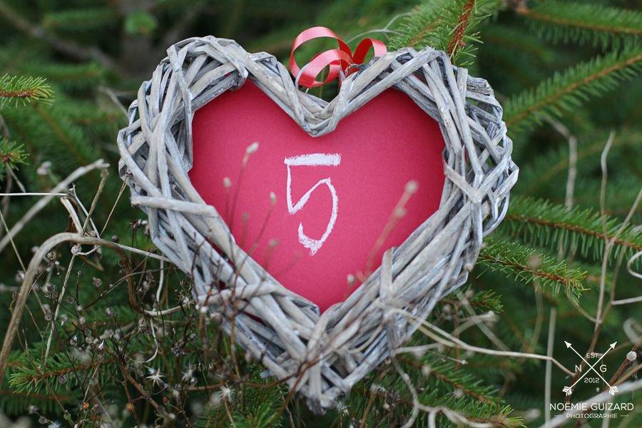 seance-photo-anniversaire-de-mariage-5-ans-apres-noemie-guizard (22)