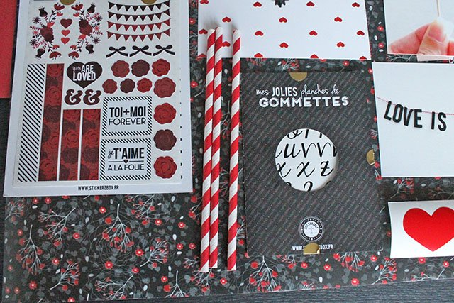 stickerzbox-box-a recevoir-papeterie-stickers-maskingtape-adhesifs-cartes (13)