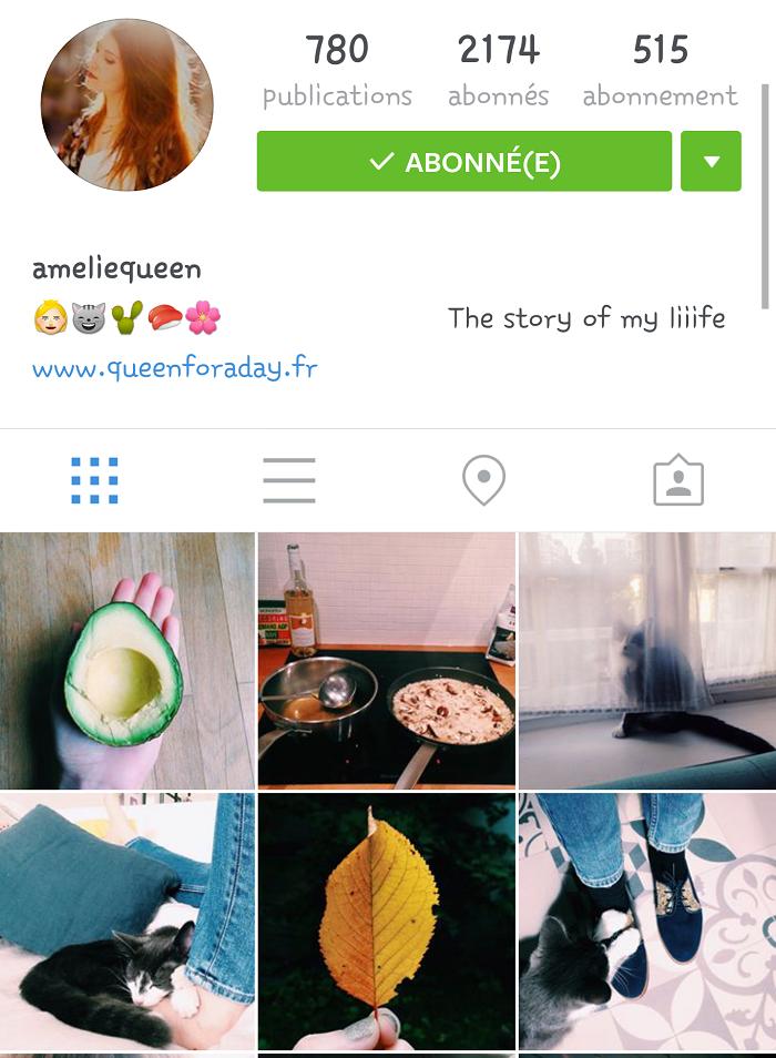Mes comptes instagram préférés : Malotine