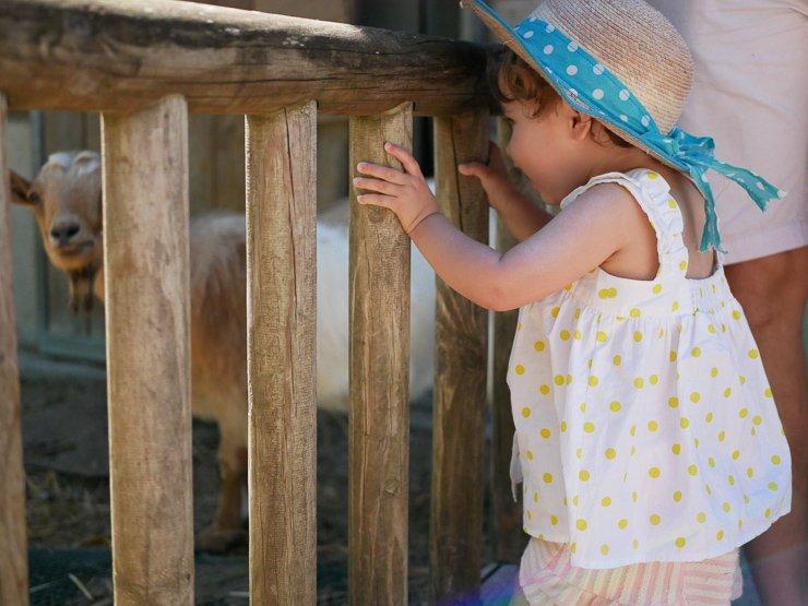 Une journée en famille au zoo de Thoiry